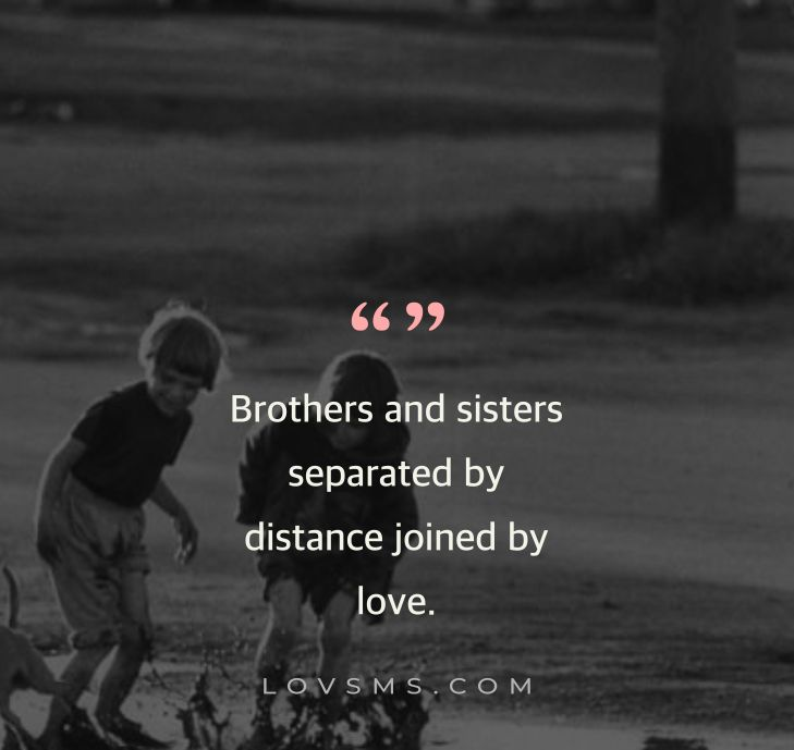Brother Quotes From Sister